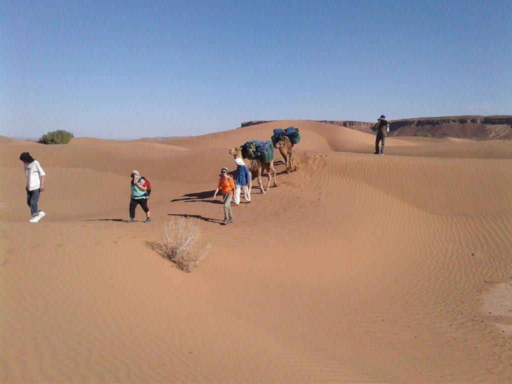 Vallée du Draa, Randonnée au Maroc