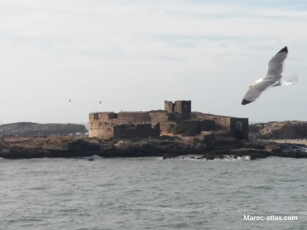 Maroc Atlas l'île de Mogador